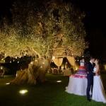 Matrimonio all'aperto. Romantico taglio della torta nuziale nel magico giardino degli ulivi.